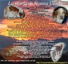 Crazy and Sweet Pets: La storia di Nonna Giada