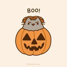 halloween pusheen Google Cats, Pusheen Cat, Google Search, Closet, American Eagle Outfitters, Meet You, Join, Converse, Art