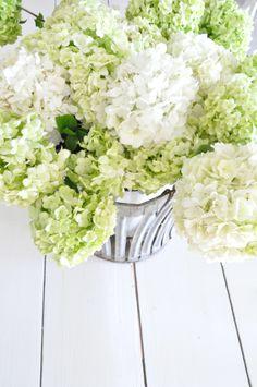 Buckets of Burlap blog. Hydrangeas in a zinc bucket. Vintage, farmhouse, country, Spring, flowers, farm table, centerpiece