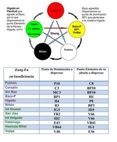 9ª Lección-TRATAMIENTO EN LOS CINCO MOVIMIENTOS -II parte