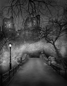 "Photographer Michael Massaia black and white series: ""Deep in a dream – Central Park"""