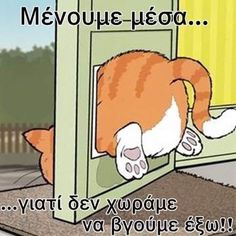 Just For Fun, Just In Case, Give It To Me, Fat Cats, Greek Quotes, Funny Cartoons, Minions, Picture Video, Funny Pictures