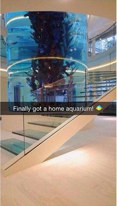 13 More Spoiled Rich Kids On Snapchat