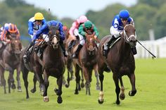 Horse Racing Betting Tips Windsor Palace, Horse Racing Betting Tips, White Cliffs Of Dover, Race Around The World, South East England, Blenheim Palace, Royal Ascot, Queen Anne, Ranger