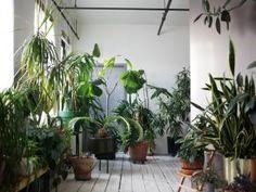 deco 2016 interieur loft - Recherche Google