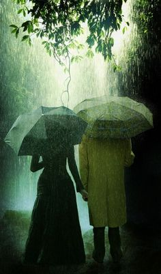 People With Umbrellas in a Rain Forest Pics - High Resolution Photoshop Pictures - Freaking News Rain Umbrella, Under My Umbrella, Walking In The Rain, Singing In The Rain, Rainy Night, Rainy Days, Its Raining Its Pouring, I Love Rain, Rain Go Away