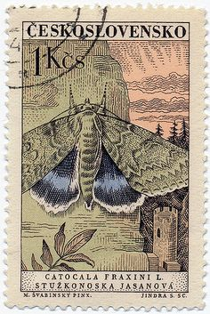 Another absolutely stunning mid-60's Czech stamp this time by Max Švabinský and engraved by Jindra Schmidt. Love those subtle colours and that expert crosshatching. Like an Edward Gorey short story set in medieval Central Europe.