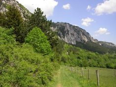 Hohe Wand is a cliff in Lower Austria and has an elevation of 833 meters. Hohe Wand from Mapcarta, the free map. European Countries, Alps, Denmark, Austria, Belgium, Poland, Norway, Climbing, Greece