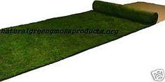 2 x8  Real Sheet Moss Runner Table Wedding Cloth Decor Garden Aisle Moss Mat | eBay