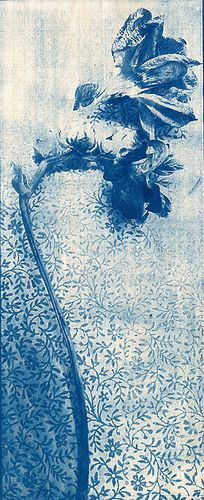 Lynnette Miller. Cyanotype from a photograph of a dried flower placed on the end paper of an old book.