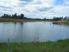 GOT A LEAKING DAM OR POND? We can help! Try Water$ave Plug or Seepage today! Head to our website NOW: https://www.polymerinnovations.com.au/solutions/dam-pond-sealants/ #Leaking #Dam #Pond #Water #DIY #Cheap #Environmentally #Friendly #Soil #Farm #Agriculture