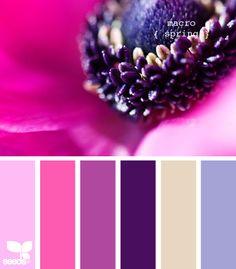excellent website for exploring color palettes...will be a great tool when deciding the colors for my next quilt. Purple Color Palettes, Colour Pallette, Colour Schemes, Color Combos, Color Patterns, Pink Palette, Paleta Pantone, Spring Wedding Colors, Spring Colors