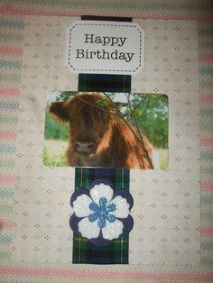 Highland Cow Tartan Birthday Card