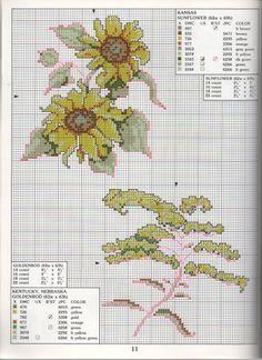 STATE FLOWERS  (bbj0090) Kentucky, Nebraska & Kansas 1/1