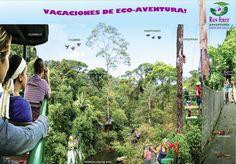 Vacaciones de Eco-Aventura en Rainforest Adventures Costa Rica!