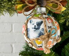 Decoupage - Photo Transfer Holiday Project for Pets