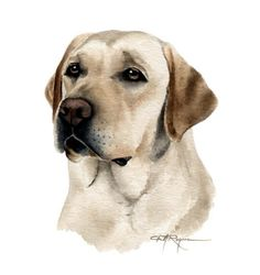LABRADOR RETRIEVER chien aquarelle Art Print signée par l'artiste DJ Rogers