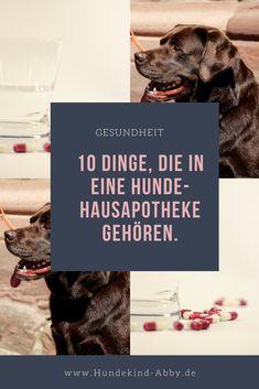 #Hund #Hundeblogger #Hundeliebe #Wissen #Gesundheit Hunde || Erziehung || DIY || Wissen || Gesundheit