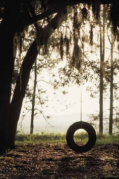 A tire swing curves with the earth