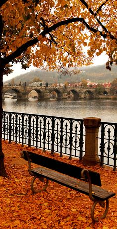 Charles Bridge in Autumn, Prague, Czech Republic
