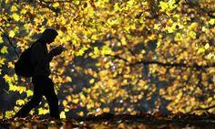 Five Books for Your Autumn Reading http://havetotewilltravel.com/books-nicole-meier/