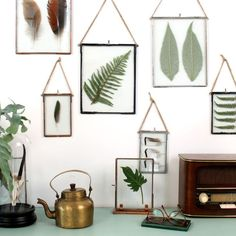 I love frameless frames anyway but displaying them in a collection of leaves and ferns is just beautiful.