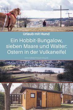 Über das verlängerte Osterwochenende ging es mit Freunden und den Hunden in die Vulkaneifel. Unser Ziel: Das Feriendorf Pulvermaar in Gillenfeld.