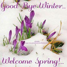 Bye bye Winter