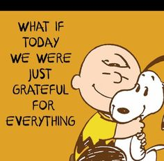 """""""What if today we were just grateful for everything"""", Charlie Brown and Snoopy"""