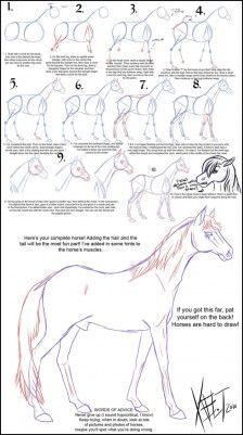 Nun ... erklären die Zeichen der Pferde.