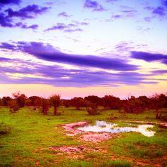 A purple South Africa sunset