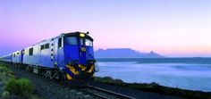 """The Blue Train is an institution in South Africa: Its roots go back to the 1920s, when it shuttled passengers between Johannesburg and Cape Town. Refurbished in 1997, the elegant train — it bills itself as """"a magnificent moving five-star hotel"""" — now runs between Pretoria and Cape Town, providing a 1,000-mile tour through the heart of South Africa. The beautiful landscape it passes includes such features as the dry Karoo region, the Highveld plateau, and grasslands and thickets."""