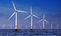 World's largest and cheapest offshore wind farm will power 1m homes - The offshore wind farm near Borssele in the Netherlands will cost $2.9 billion less than originally thought.