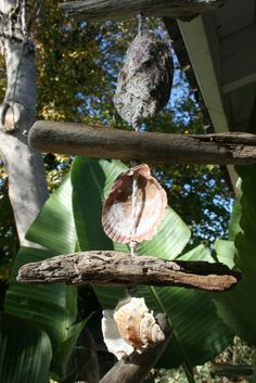 Driftwood, Shell, Rope Windchime, Beach Mobile, Beach Home Decor (made to order) via Etsy