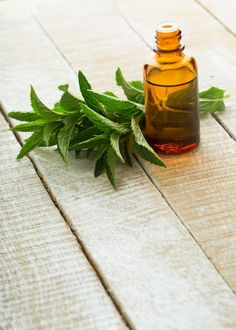 Stay Cool with #Aromatherapy | #Peppermint Essential Oils