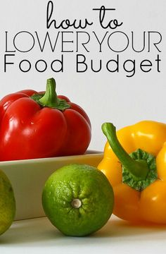 February's Food Budget Check In – We Failed But I'm Happy. What is your average food budget each month? Are you trying to spend less? What works for you and what doesn't?