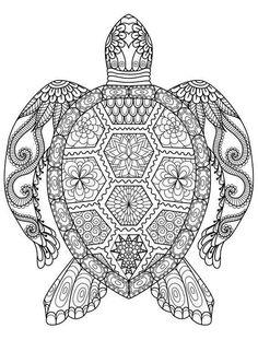 Mandalas para colorear: Dibujos para descargar gratis - Mandala tortuga