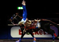 All American Cowgirl Chicks, Cowgirl Equestrian Drill Team, Trick Riding, Rodeo Entertainment Horse Information, Trick Riding, Vaulting, Coaches, Stunts, Rodeo, Tack, Equestrian, Trains
