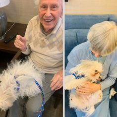 Our Assisted Living residents at Four Elms Retirement Residence in Thornhill absolutely love it when Leo the dog comes to visit! Wellness Activities, Emergency Response, Assisted Living, Senior Living, Dog Love, Retirement, Leo, Vibrant, Dogs