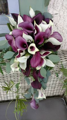 Bridal cascade bouquet with white, purple, and plum calla lilies. By Floribunda Designs.