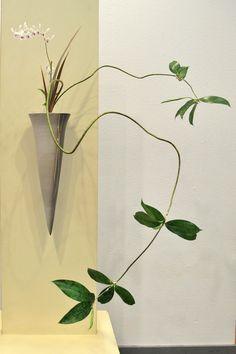 Ikebana ikenobo shoka shimputai by Lusy W. Indonesia