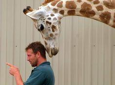 Oliver says Hey Jordan I've got your back!