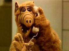 Alf was my favorite show.