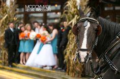 Wedding party carriage ride around Mackinac Island. -image by McCoyMade 2014- #MackinacIslandWedding #MissionPointResort #McCoyMadePhotography #NorthernMichiganWedding #PureMichganWedding #horsedrawncarriageride