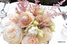 love blushing bride protea!