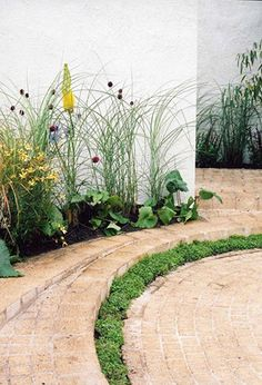 123 Best Andy Sturgeon Garden Design Images In 2018 Balcon
