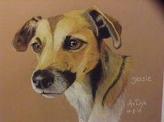 Jessie, het hondje van mijn zus Pastelpotlood