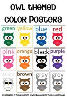 Owl Themed Color Posters - Middle Grades Maven - TeachersPayTeachers.com