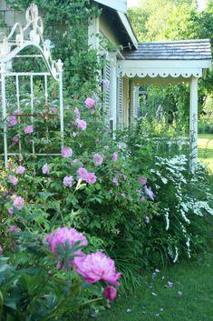 Aiken House & Gardens: Romantic Rose Garden