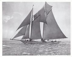 She has sailed hard her whole life.  The schooner Martha. http://www.schoonermartha.org/